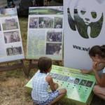 uzanapolyanafest_2012-22-800x533
