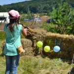 EcoFest-2015 (8)